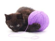 Kattunge med garnnystan Arkivfoto