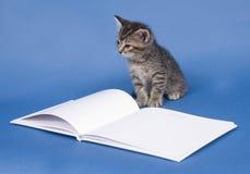 Kattungen med gästen bokar arkivfoto