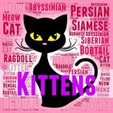 Kattungeord föreställer inhemska Cat And Young royaltyfri illustrationer