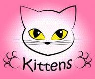 Kattungeordet betyder inhemska Cat And Cats royaltyfri illustrationer