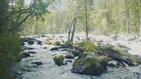Katun河和小山的鸟瞰图在日落期间在雨以后 共和国阿尔泰,俄罗斯 股票录像