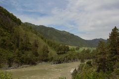 Katun河在阿尔泰, Chemall 库存照片
