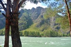 Katun河的看法以山为背景的 免版税库存照片