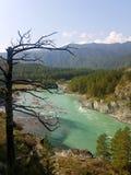 Katun Fluss Stockfoto
