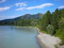 Katun o rio Imagens de Stock