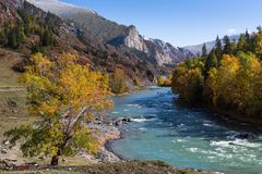 Katun river in the Altai Mountains, Altai Republic, Russia. Nature. Royalty Free Stock Photo