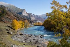 Katun River in Altai Mountains, Russia. Nature. Royalty Free Stock Photos