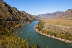Katun River in Altai Mountains, Russia. Nature. Royalty Free Stock Images