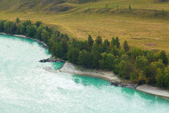 The Katun river in the Altai region in Russia. Mountain cold river. Green fields and forests Royalty Free Stock Photography