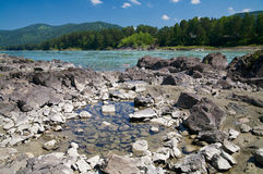 Katun river and mountains Royalty Free Stock Images