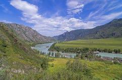 Katun River valley, Altai, Russia. Stock Photo