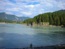 Katun river Stock Photography