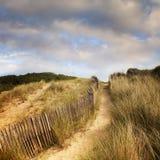 katwijk delle dune vicino al percorso olandese Immagine Stock