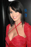 katy perry royaltyfria bilder