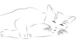 Katze als Strichzeichnung lizenzfreie abbildung