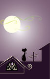 Katze auf dem Dach Lizenzfreies Stockfoto