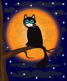 Katze auf einem Baum Lizenzfreie Stockfotos