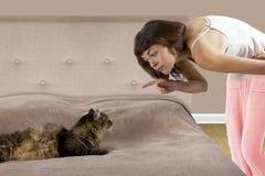 Katze auf einem Bett Stockbilder