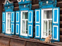 Katze auf einem Hintergrund des russischen Hauses Lizenzfreie Stockfotografie