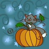 Katze auf einem Kürbis am nächtlichen Himmel mit Sternen Stockbild