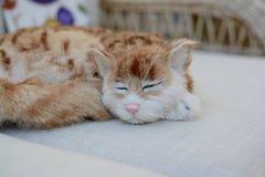 Katze auf einem Sofa Stockfotografie