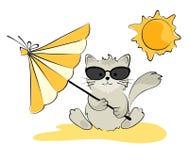 Katze in den Gläsern auf dem Strand Lizenzfreies Stockbild