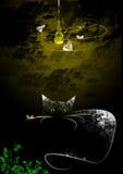 Katze in der Dunkelheit Stockfoto