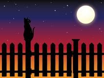 Katze, die auf Palisadenzaunbeitrag im Mondschein sitzt Stockbilder