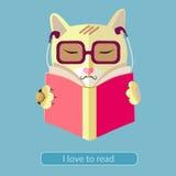 Katze, die ein Buch liest Stockbild