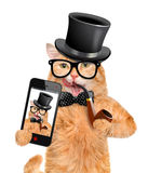 Katze, die ein selfie mit einem Smartphone nimmt Stockfoto