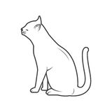 Katze, die hinten darstellt Lizenzfreies Stockbild