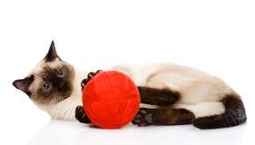 Katze, die mit einer Kugel spielt Auf weißem Hintergrund Stockfotografie