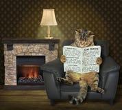 Katze, die zu Hause eine Zeitung liest lizenzfreie stockfotos