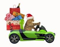 Katze fährt ein Auto mit Weihnachtsspielwaren stockbilder