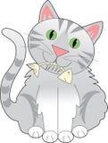 Katze-Fisch-Knochen Stockfotos