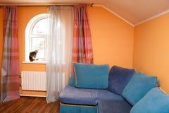 Katze im Rauminnenraum Lizenzfreie Stockfotos