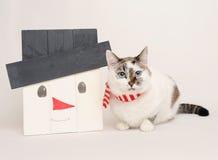 Katze im Schal mit hölzernem Schneemann Stockbilder