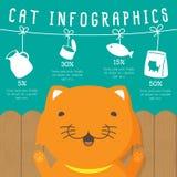 Katze infographics Vektor Abbildung