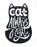 Katze ist immer rechte Beschriftung Stockfotografie