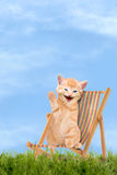 Katze/Kätzchen, das im Klappstuhl/in Sunlounger sitzt Stockfoto