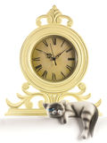 Katze liegt auf einer Tabelle an der alten Uhr Stockbilder