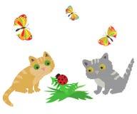 2 Katze, Marienkäfer und butterflys Lizenzfreie Stockbilder
