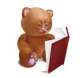 Katze mit dem Buch Stockbild