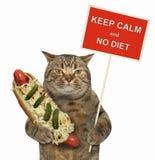 Katze mit einem lustigen Zeichen und einem Hotdog 2 stockfotografie