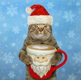 Katze mit einem Santa Claus-Tasse Kaffee 2 lizenzfreie stockfotos