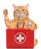 Katze mit einer Ausrüstung der ersten Hilfe Lizenzfreie Stockfotografie