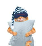 Katze mit einer Maske für das Schlafen mit einem Kissen Stockfotografie