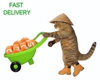 Katze mit einer Schubkarre von Sushi vektor abbildung