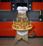Katze mit Feiertagspizza in der Küche vektor abbildung