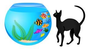 Katze mit Fischen im Aquarium Lizenzfreies Stockbild